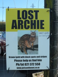 LOST ARCHIE